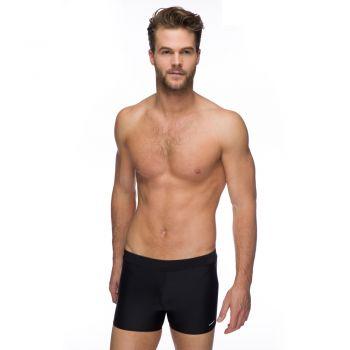 Solid Lycra Shorts