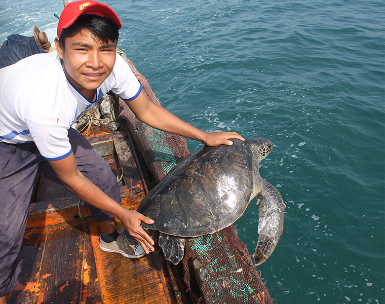 Sea Turtle bycatch has a lucky escape