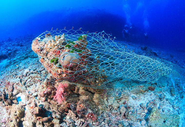 Ghost Fishing Net Stuck on Tropical Coral
